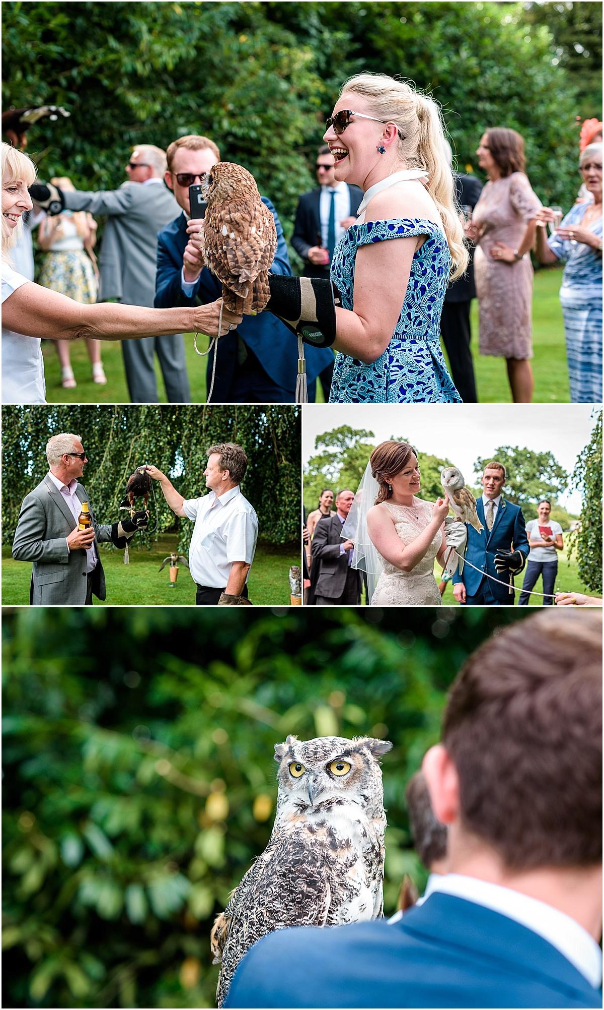 birds of pray at wedding