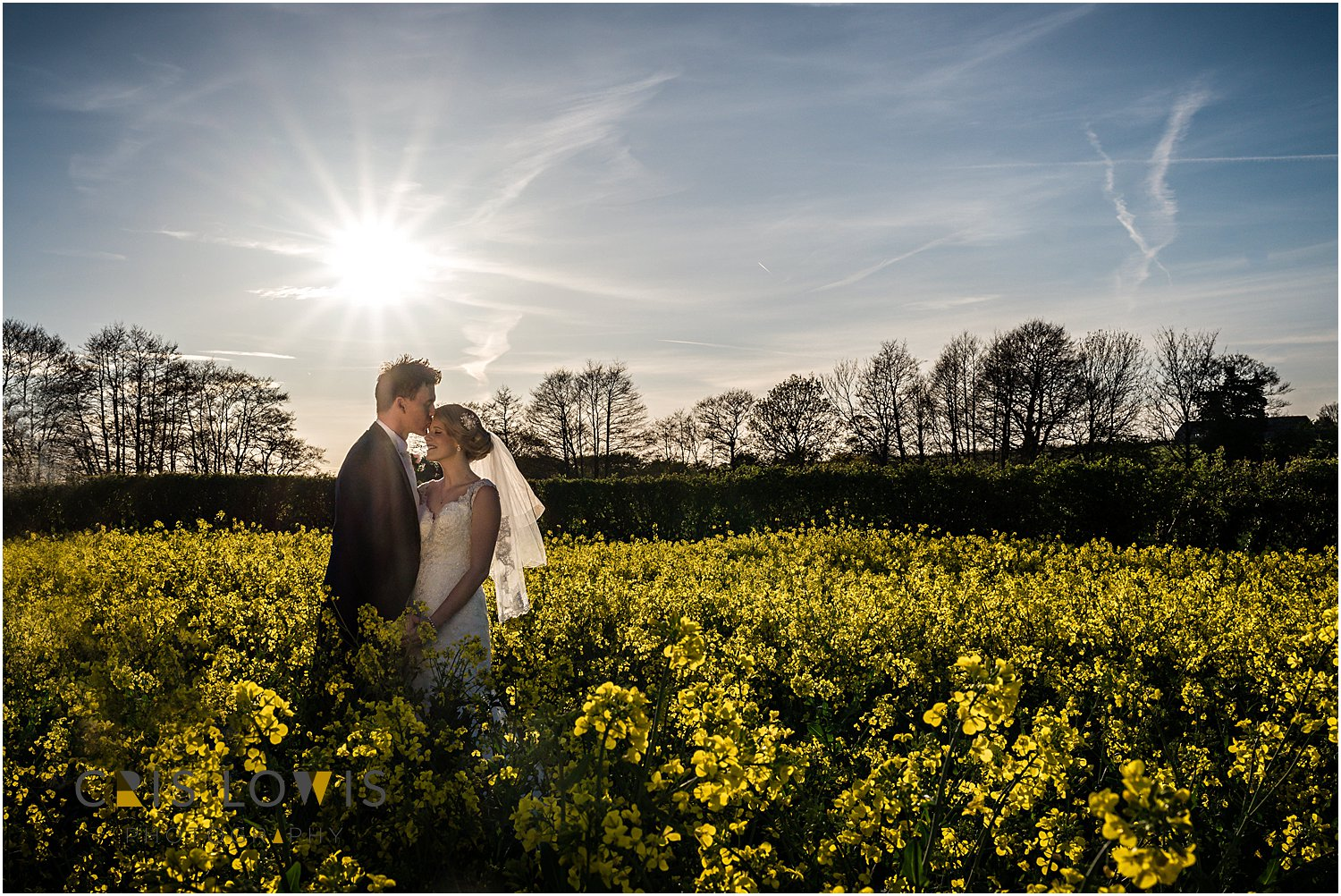 bride and groom portraits in oil seed rape field