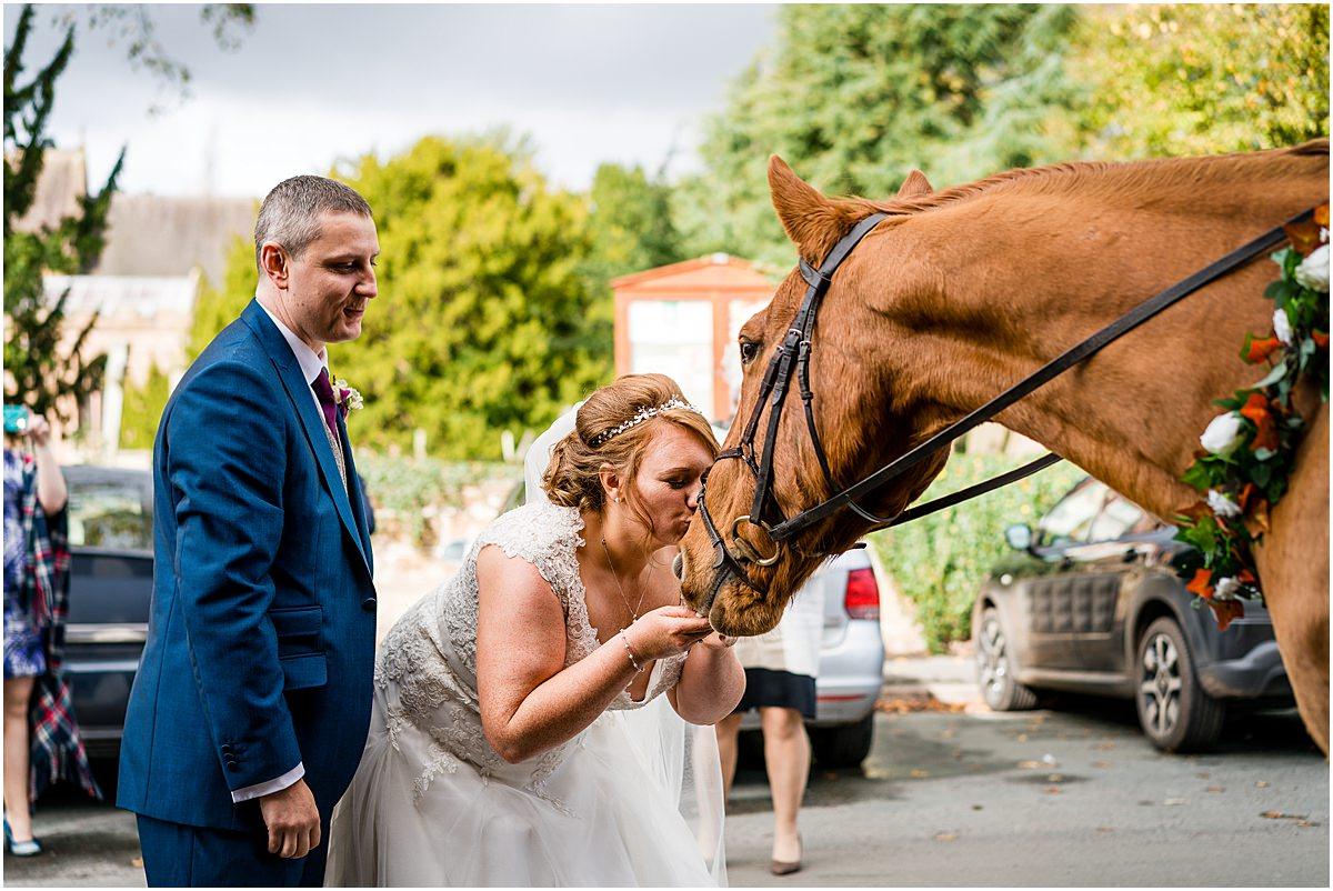 brides horse