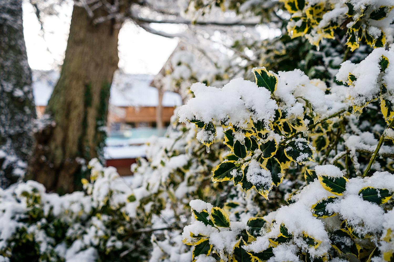 snow at the millbarns
