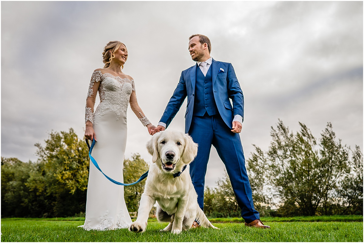 bride and grooms dog
